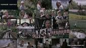 http://img58.imagetwist.com/th/07112/14oj5867e6g9.jpg