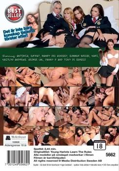Flickskolan (2012) DVDRip