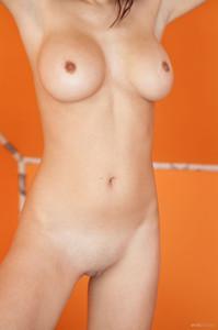 http://img58.imagetwist.com/th/07711/i95sg8xkxrxj.jpg